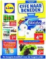Lidl Werbeprospekt mit neuen Angeboten (1/116)