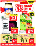 Lidl Werbeprospekt mit neuen Angeboten (40/48)